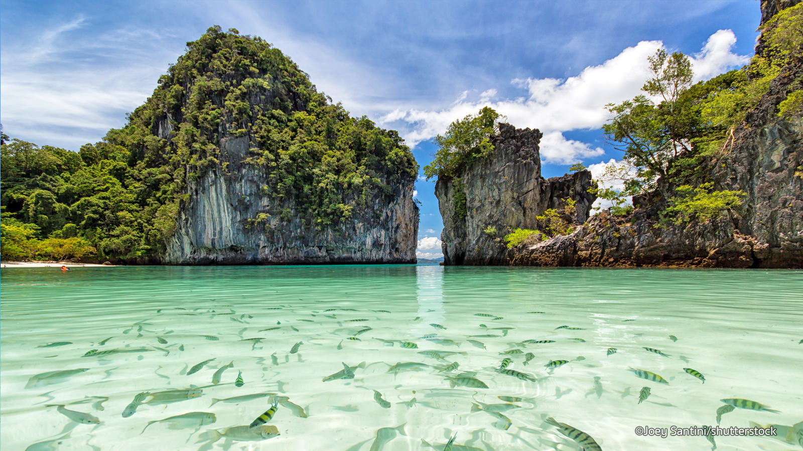 The Best Phuket Spa to Visit for the ultimate Exotic Detox Journey in Thailand!