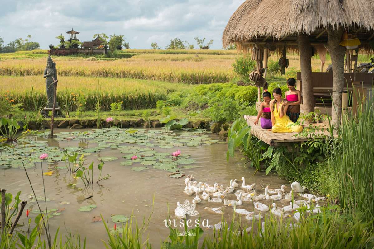 An authentic Balinese Experience in Visesa Ubud; a Luxury Resort in Ubud!
