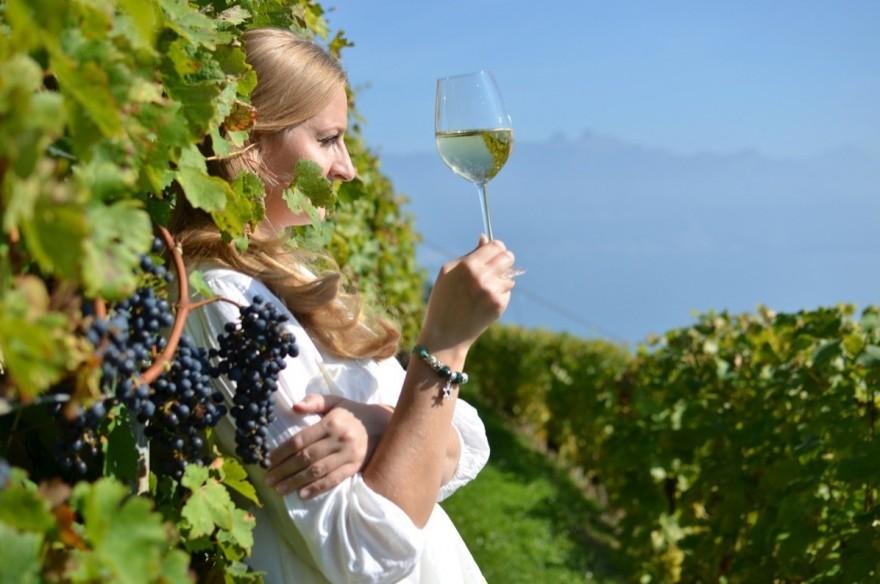 The Cretan Wineries you should visit!