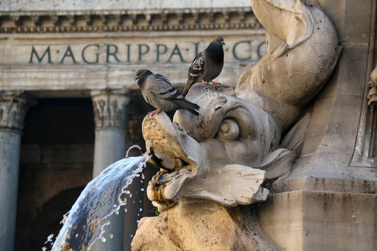 9 Spectacular Fountains of Rome!