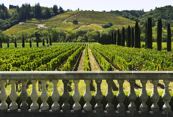 5 Most Beautiful Wineries You Should Visit at least Once