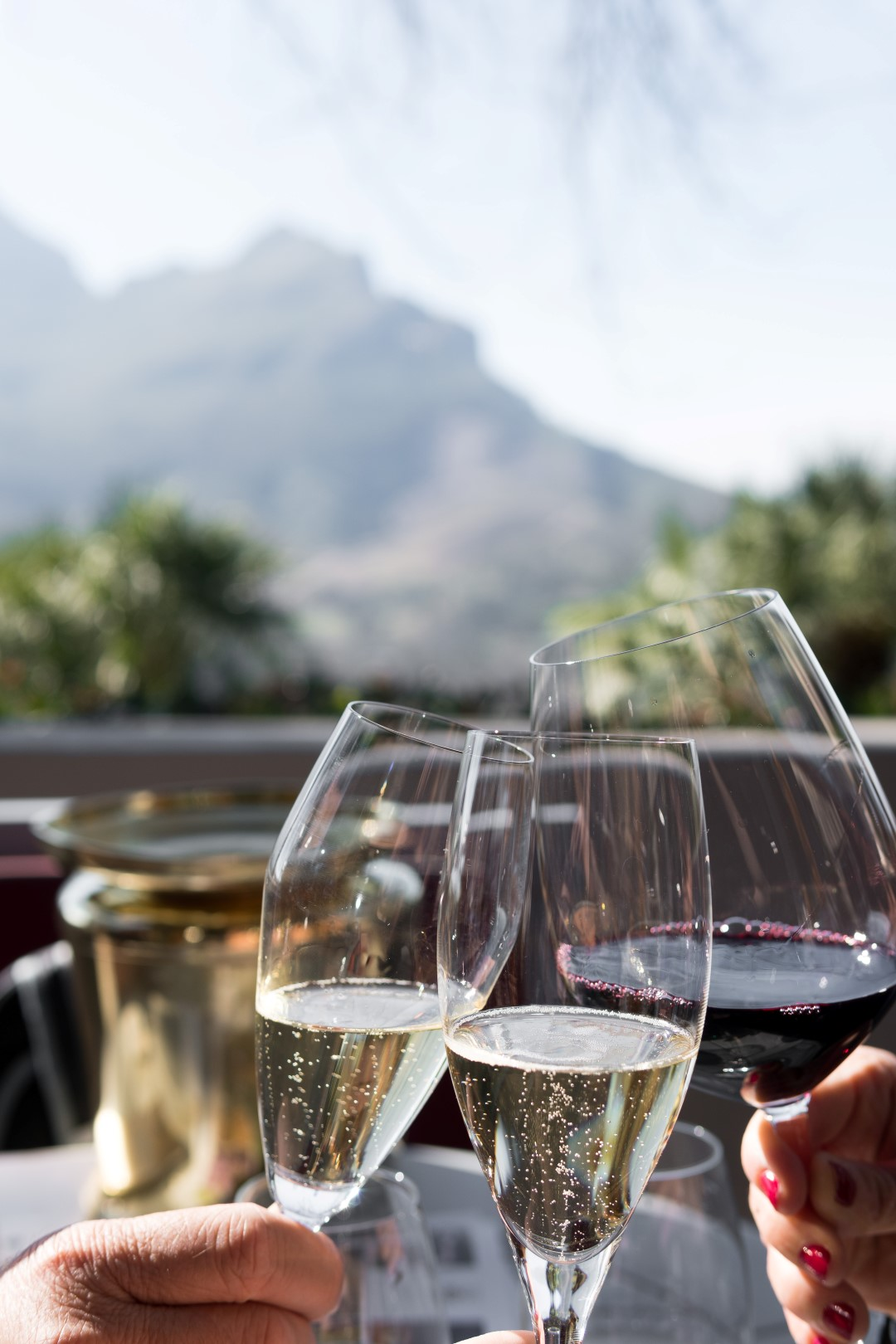 5 Amazing Wine Destinations for Gay Couples!
